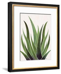 Vintage Agave by Modern Tropical