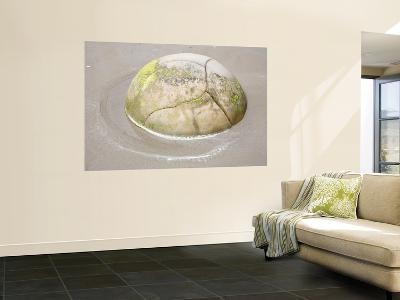 Moeraki Boulder, Koekohe Beach, New Zealand-Stocktrek Images-Wall Mural