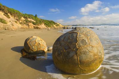 Moeraki Boulders Massive Spherical Rocks Which--Photographic Print