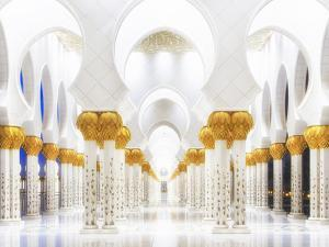 White and Gold by Mohamed Raof