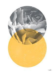Blossoms I v2 by Moira Hershey