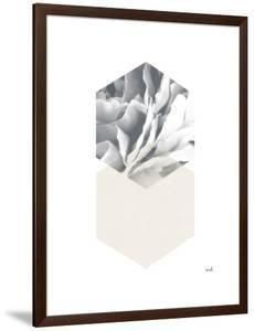 Blossoms IV v2 by Moira Hershey