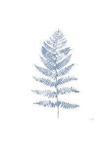 Fern Print II Blue No Shiplap by Moira Hershey