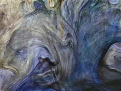 Ephemeral Beauty-1 by Moises Levy