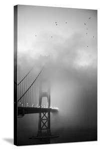Golden Gate and Birds by Moises Levy