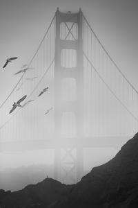 Golden Gate Pier and Birds II by Moises Levy
