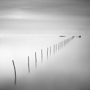 Lines 2 by Moises Levy