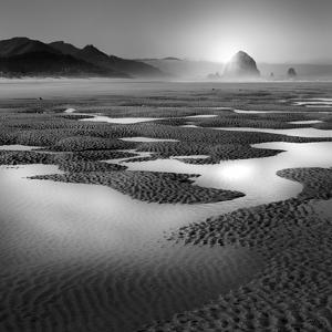 Path by Moises Levy