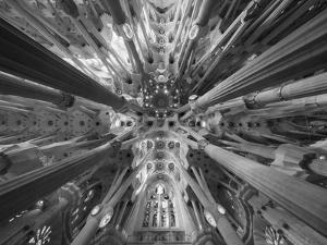 Sagrada 1 by Moises Levy