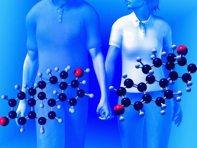 Molecular Models of the Hormones Testosterone (Left) and Estrogen (Right)-Carol & Mike Werner-Photographic Print