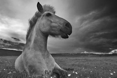 Moment in Time-Bragi Ingibergsson --Photographic Print