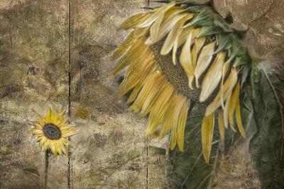 Momma Said-Barbara Simmons-Giclee Print