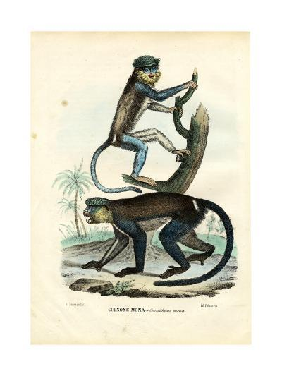 Mona Monkey, 1863-79-Raimundo Petraroja-Giclee Print