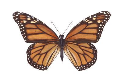 Monarch Butterfly (Danaus Plexippus), Milkweed Butterfly, Insects-Encyclopaedia Britannica-Art Print