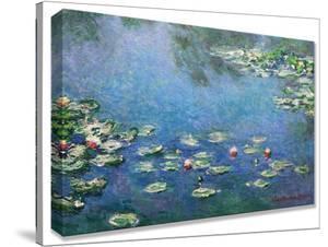 Monet Waterlilies by monet