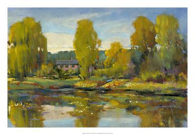 Monet's Water Lily Pond II-Tim O'toole-Giclee Print