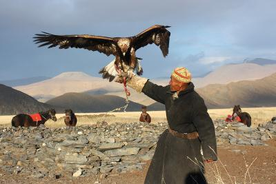 Mongolia - 25 July: the Senior Mongolian Horseman in Traditional Clothing with Golden Eagles During-TTstudio-Photographic Print