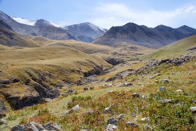 Mongolia, Bayan Logia Province, Gashuun Suhayt. River Valley-Emily Wilson-Photographic Print