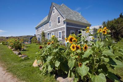 Monhegan Island, Maine-Susan Degginger-Photographic Print