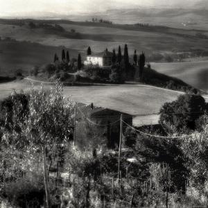 Tuscany by Monika Brand