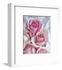 Perfectly Pink II by Monika Burkhart