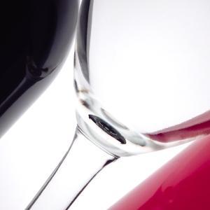 Wine Curves V by Monika Burkhart