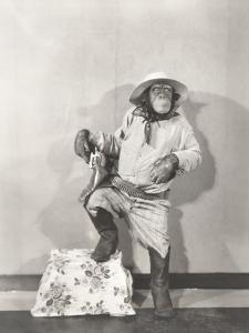 Monkey Dressed Up Like a Cowboy
