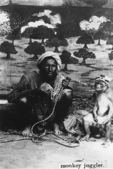 Monkey Juggler, India, 20th Century--Giclee Print