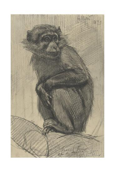 Monkey on a Branch, 1879-August Allebe-Giclee Print