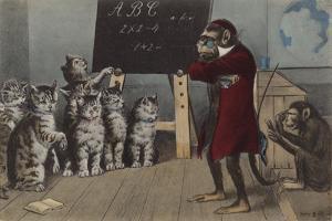 Monkey Teaching a Class of Kittens