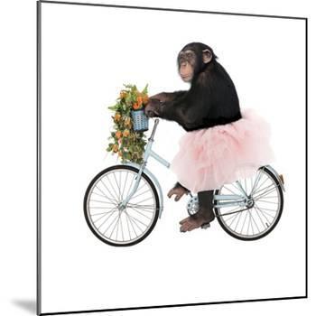 Monkeys Riding Bikes #1-J Hovenstine Studios-Mounted Giclee Print