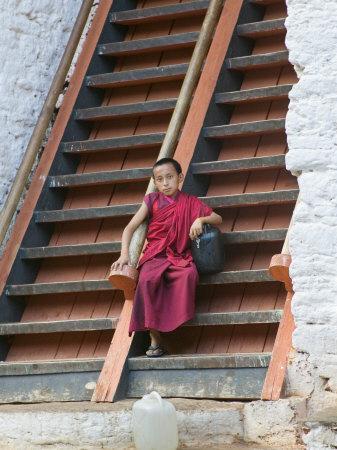 https://imgc.artprintimages.com/img/print/monks-in-punakha-dzong-punakha-bhutan_u-l-p58cf80.jpg?p=0