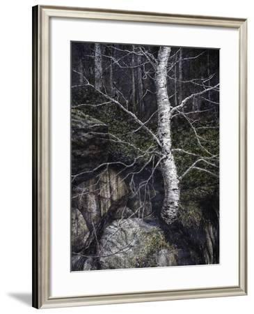 Monothesium-John Morrow-Framed Giclee Print