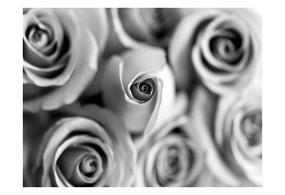 Monotone Bouquet-Tracey Telik-Art Print