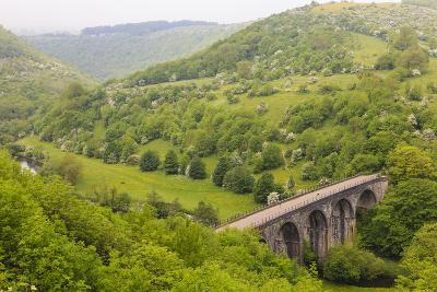 Monsal Trail Viaduct, Monsal Head, Monsal Dale, Former Rail Line, Trees in Full Leaf in Summer-Eleanor Scriven-Photographic Print