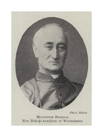 https://imgc.artprintimages.com/img/print/monsignor-brindle-new-bishop-auxiliary-of-westminster_u-l-pvih580.jpg?p=0