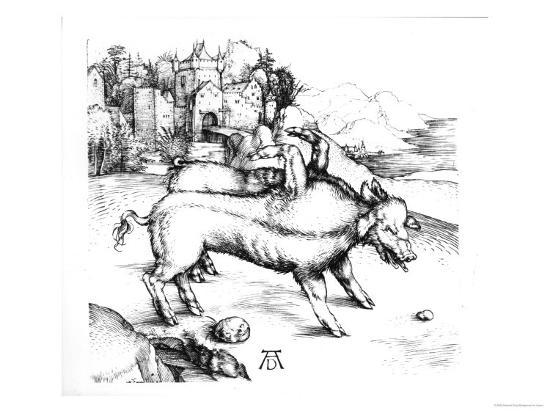 Monstrous Pig-Albrecht D?rer-Giclee Print