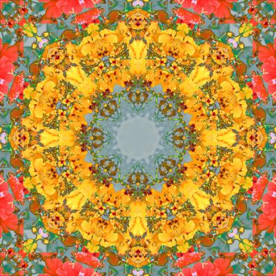 https://imgc.artprintimages.com/img/print/montage-of-flower-photographies-orchids-in-a-symmetrical-ornament-mandala_u-l-q11z6eb0.jpg?p=0