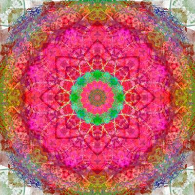 https://imgc.artprintimages.com/img/print/montage-of-flowers-photographies-in-a-symmetrical-ornament-mandala_u-l-q11z7mg0.jpg?p=0
