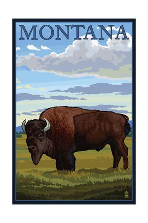 Montana - Bison Scene-Lantern Press-Art Print