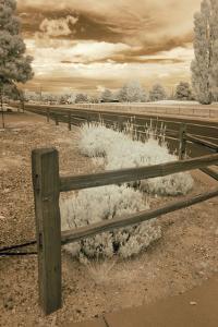 Fence & Road, Albuquerque, New Mexico 06 by Monte Nagler