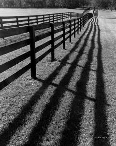 Fences and Shadows, Florida by Monte Nagler