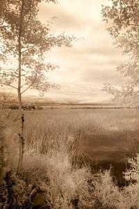 Peaceful Morning I by Monte Nagler
