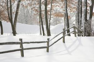 Winter Fence & Shadow, Farmington Hills, Michigan '09 by Monte Nagler