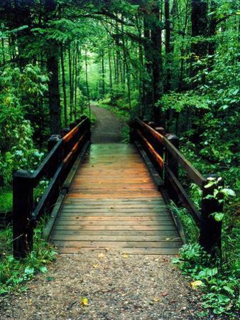 Wooden Bridge, Sundell, Michigan '90 by Monte Nagler