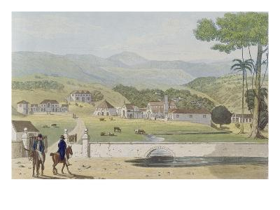 Montpelier Estates, St James, from 'A Picturesque Tour of the Island of Jamaica'-James Hakewill-Giclee Print