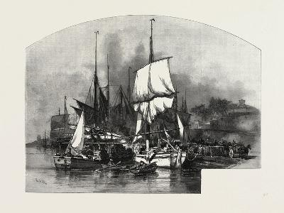 Montreal, Wood Barges, Canada, Nineteenth Century--Giclee Print