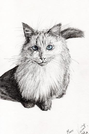 Monty, 2009-Vincent Alexander Booth-Giclee Print