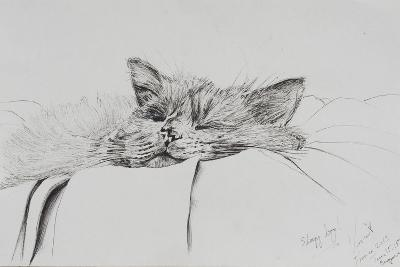 Monty, Sleepy Boy-Vincent Alexander Booth-Photographic Print