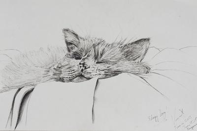 https://imgc.artprintimages.com/img/print/monty-sleepy-boy_u-l-ppnbyk0.jpg?p=0